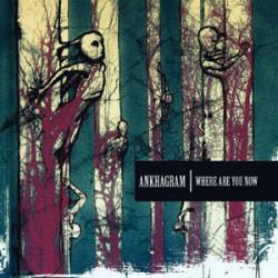 Memore dell'ottimo Neverending Sorrow mi sono indirizzato fiducioso nel successivo lavoro di marca Ankhagram. L'euforia era scattata automatica una volta saputo che l'allora nascente Silent Time Noise Records aveva in […]