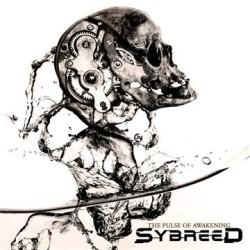 """I Sybreed con il loro terzo disco erano in procinto di evolversi, pronti a spiccare un balzo importante verso un netto processo di """"melodicizzazione"""", un travestimento richiesto per poter dare […]"""