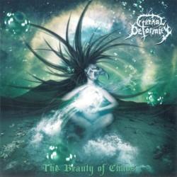 Non ho fatto la loro conoscenza tanto presto, ben quattro album sul groppone dovevano passare per i polacchi Eternal Deformity prima dell'avvenuto approccio/contatto con The Beauty Of Chaos. Di rimando […]