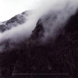 Nel 2011 i Falls Of Rauros erano intenti a confezionare un bel segnale per tutti i curiosi in circolazione. Eppure la band bazzicava in giro da qualche tempo (i primi […]