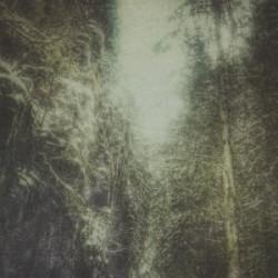 Immagini attutite sotto un incedere melodico-impervio-anestetizzante. L'album primo del monicker Earth and Pillars si erge possente, con bocca spalancata ed un grido sofferto -ma muto- pronto a strozzarsi nella gola, […]