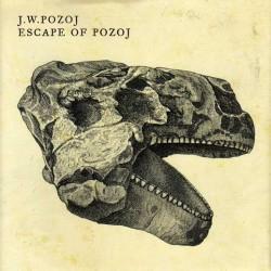 """Secondo promesse continuava l'operazione """"ristampa"""" in casa Johann Wolfgang Pozoj. La Code666 Records rilasciava così Escape Of Pozoj, seconda fatica discografica della band croata. Ci troviamo certamente di fronte ad […]"""